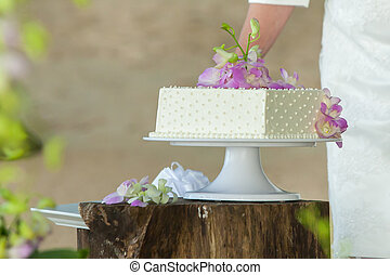 close-up mid section of a newlywed cutting wedding cake.