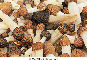 Close-up of a Bunch of Wild Morel M - Close-up of a bunch of...