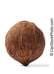 Close up of a coconut on white background. Fresh coconut isolated on white background, close up clipping object. Food concept. Macro concept.