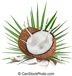 close-up of a coconuts with milk splash on white background