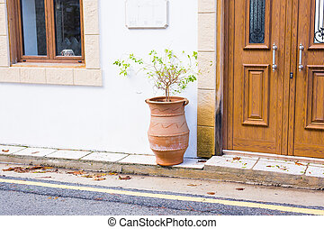 Close up of a front door with flower pot