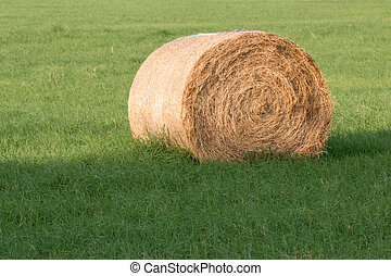 Close up of a Hay Roll on green grass