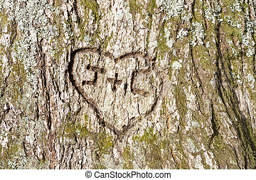 heart carved