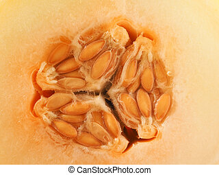 Close up of a honey melon