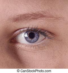 blue eye - close-up of a human female blue eye