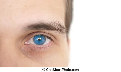 Close up of a male eye. Detail of a blue eye of a man...