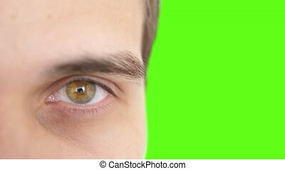 Close up of a male eye. Detail of a yellow eye of a man...