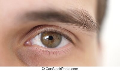 Close up of a male eye. Detail of opening a brown eye of a...
