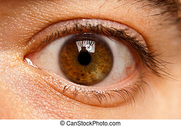Close up of a male eyeball - Macro shot of a male eyeball