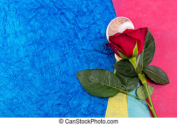 Close-up of a red rose on sea shell over blue background shot from the top. Love and valentine's day concept.