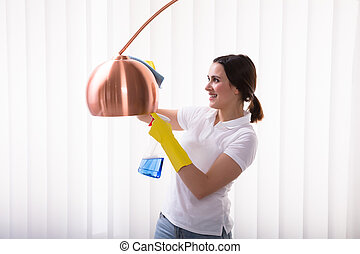Woman Cleaning Electric Lamp With Spray
