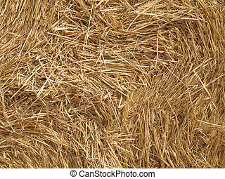 Close-up of a straw bale