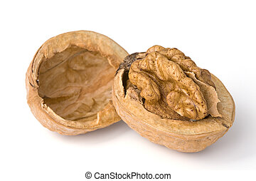 Close-up of a walnut. File content a clipping path