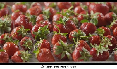 Close-up of a wet red ripe juicy strawberry on a tray of steel with holes. Berries background. Tracking slow motion video. Shallow depth of field. Full HD video, 240fps,1080p