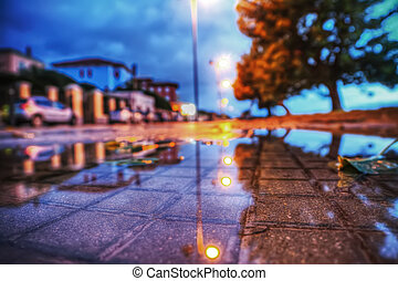 wet sidewalk by night