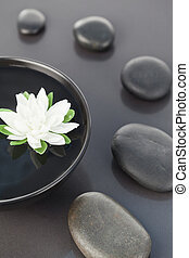 Close up of a white flower floating in a black bowl surrounded by black pebbles