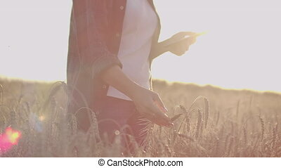 Close-up of a woman at sunset touches the wheat germ and...