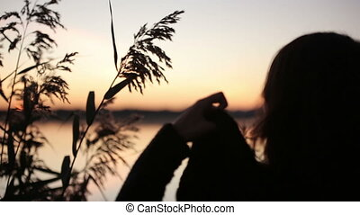Close Up of a Young Pretty Brunette Playing with Grass Watching Sunrise over the Lake
