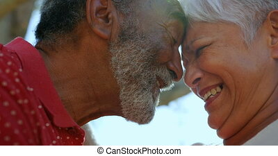 Close-up of active African American senior couple standing face to face in the garden of nursing home. They are smiling 4k