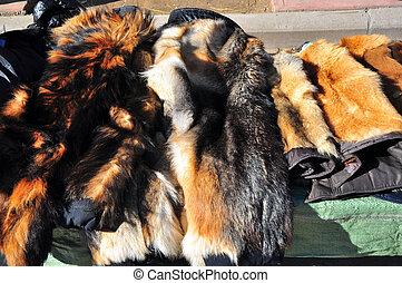 colored fur