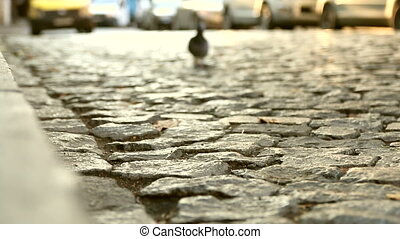 Close up of an old cobblestone road and cars passing in a distance. Abstract vintage street background.