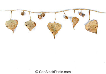 Close-up of autumn fallen leaves hang on a rope.