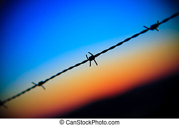 close-up of barbed wire dripping on sunset sky