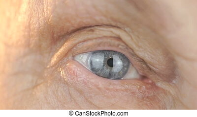 Close-up of blue eye of a woman aged 80s - Close-up of blue...