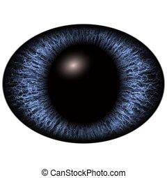 Close-up of blue unhuman eye on white