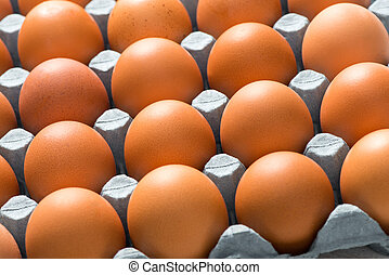 Close Up of Brown Chicken Eggs in Tray for Background