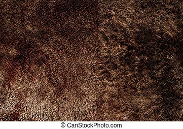 Close-up of brown fur