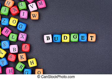 Budget word on black background