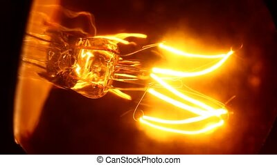 Bulb - Close up of Bulb