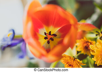 close-up of bunch of flowers with orange tulip