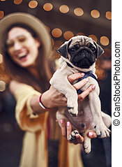 Close up of calm puppy in the hands of excited pet owner - ...