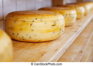 Close-up of cheese-wheels maturing on shelves - Close-up of...
