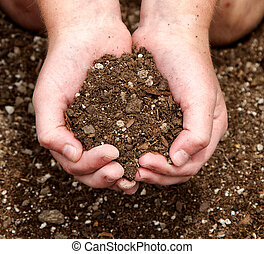 Close-up of child holding dirt