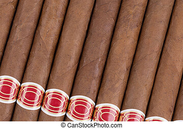 Close-up of cigars