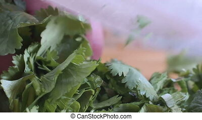Close up of cilantro chopped with a chef knife - Close up of...