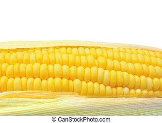 Close up of corn as background