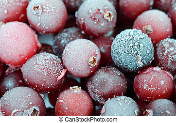 Close up of cranberries