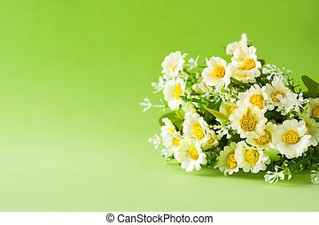 Close up of daisy flower on green background. Copyspace