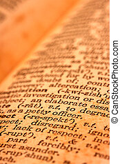 Close up of Dictionary text