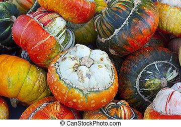 Close-up of different acorn squash