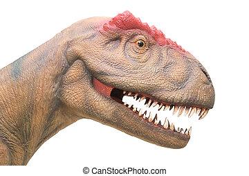 close up of dinosaur head