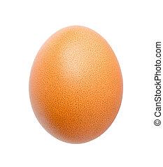 Close up of egg