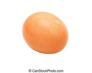 close up of egg on white background