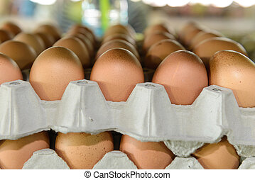 close up of eggs in paper trays, focused on the first row of...
