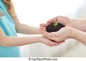 close up of father and girl hands holding sprout