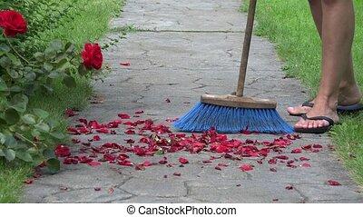 close up of female broom fallen rose petals on path in park. 4K